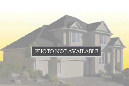 6009 N 175TH Avenue, 5791250, Waddell, Vacant Land / Lot,  for sale, HomeLife Ambassador Realty